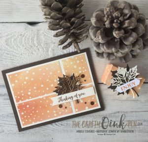 Stampin' Creative Blog Hop Casing Lyssa Zwolanek with Colourful Seasons by Mikaela Titheridge, The Crafty oINK Pen, Independent Stampin' Up! Demonstrator, UK
