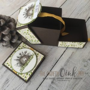 Stamping Harvest Painted Harvest Suite Hedgehog Gift Box by Mikaela Titheridge, Independent Stampin' Up! Demonstrator, The Crafty oINK Pen