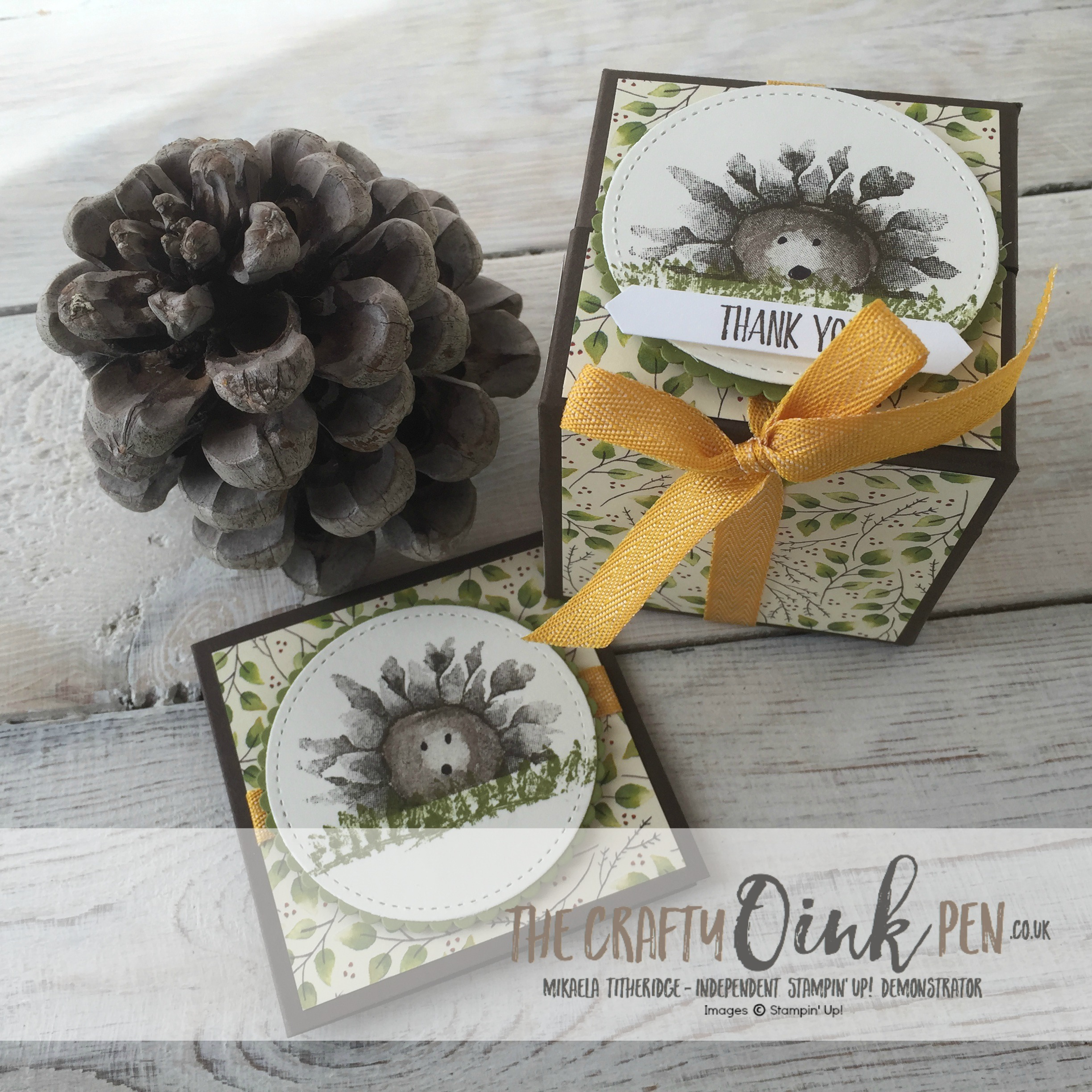 Stamping Harvest Painted Harvest Suite Hedgehog Box by Mikaela Titheridge, Independent Stampin' Up! Demonstrator, The Crafty oINK Pen