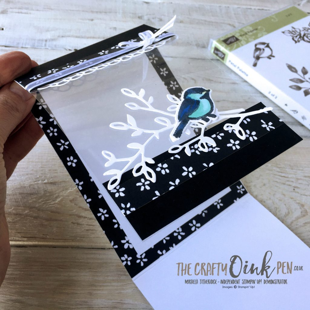 Acetate panel showing the back panel of my Petal Palette Fancy Fold Card by Mikaela Titheridge, #6UK Independent Stampin' Up! Demonstrator, The Crafty oINK Pen. Supplies available through my online store 24/7
