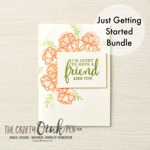 Just Getting Started Bundle from the Share What You Love Product Suite by Stampin' Up! Available 1-31st May 2018 through Mikaela Titheridge, The Crafty oINK Pen's Online shop 24/7