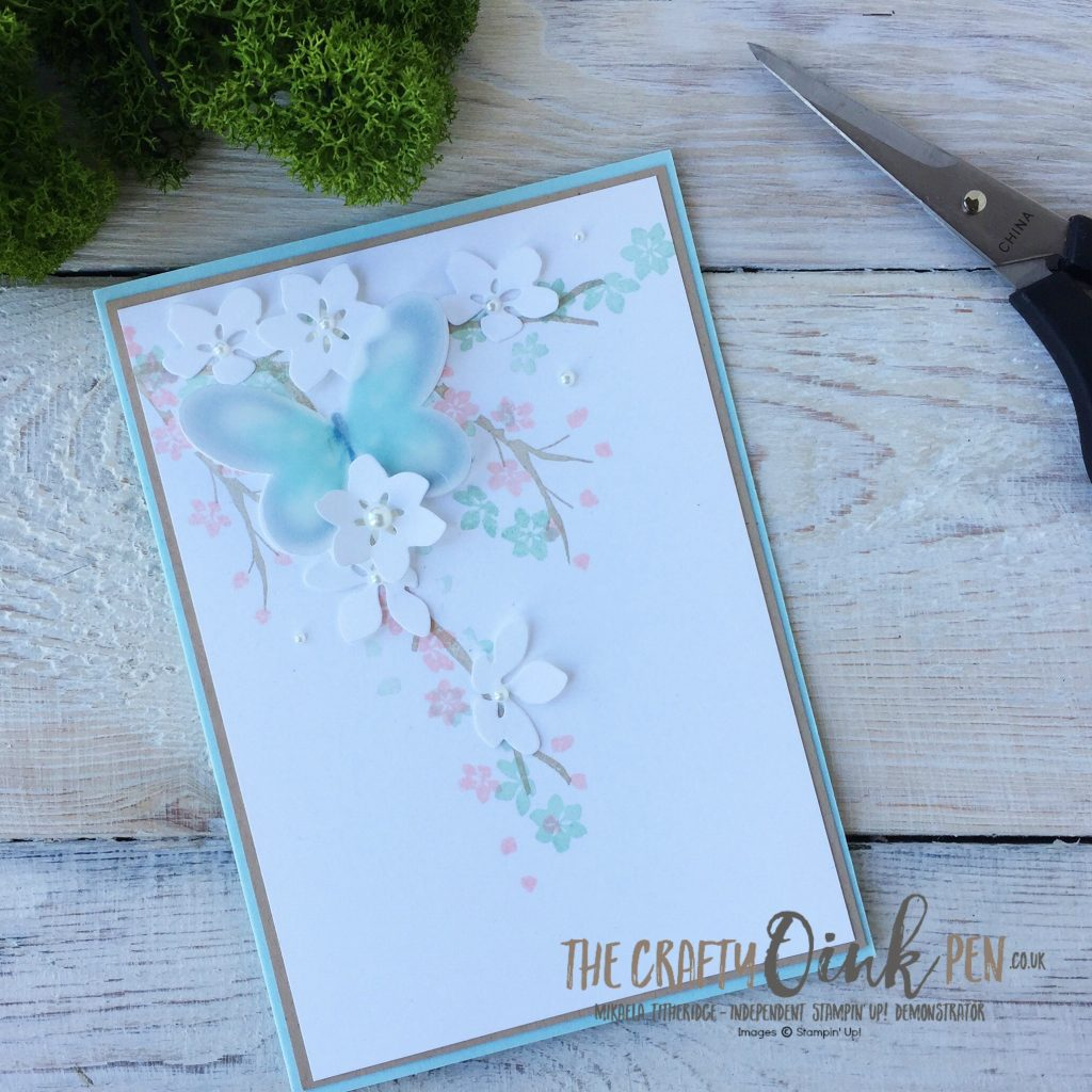 Annual Catalogue Favourite Watercolor Wings meets Colourful Seasons by Mikaela Titheridge, Independent Stampin' Up! Demonstrator, The Crafty oINK Pen. Supplies available through my online store 24/7