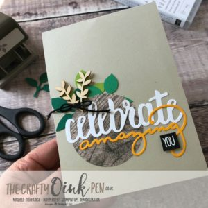 90th Birthday, Twist and Pop Card using Celebrate You and the leaf punch by Mikaela Titheridge, #6UK Independent Stampin' Up! Demonstrator, The Crafty oINK Pen. Supplies available through my online store 24/7