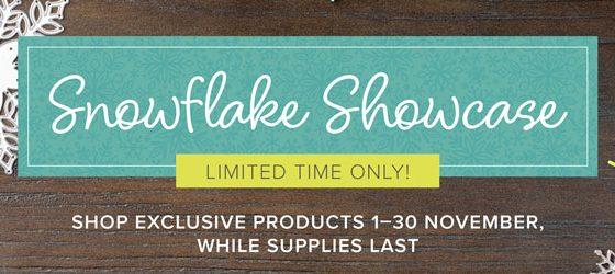 November brings us a Snowflake Showcase