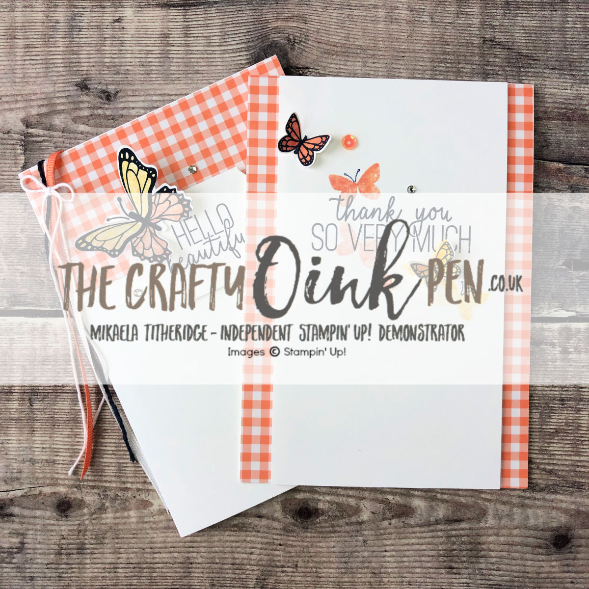 Butterfly Gala Papercraft Class by Mikaela Titheridge, UK Independent Stampin' Up! Demonstrator, The Crafty oINK Pen. Supplies available through my online store 24/7