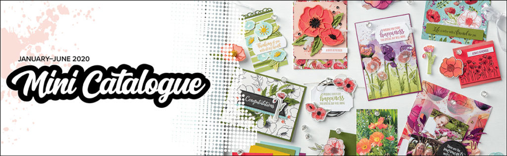 Stampin' Up! Mini Catalogue 2020 available from Mikaela Titheridge, UK Independent Stampin' Up! Demonstrator, The Crafty oINK Pen. Supplies available through my online store 24/7