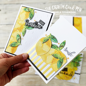 Paper Pumpkin Papercraft Kit - Box of Sunshine Alternatives for a Facebook Live with Pineapples, Lemons and lots of sunshine by Mikaela Titheridge, UK Independent Stampin' Up! Demonstrator, The Crafty oINK Pen. Stampin' Up! Products available through my online UK store 24/7. Use my Shopping Code at checkout for personal rewards from me.