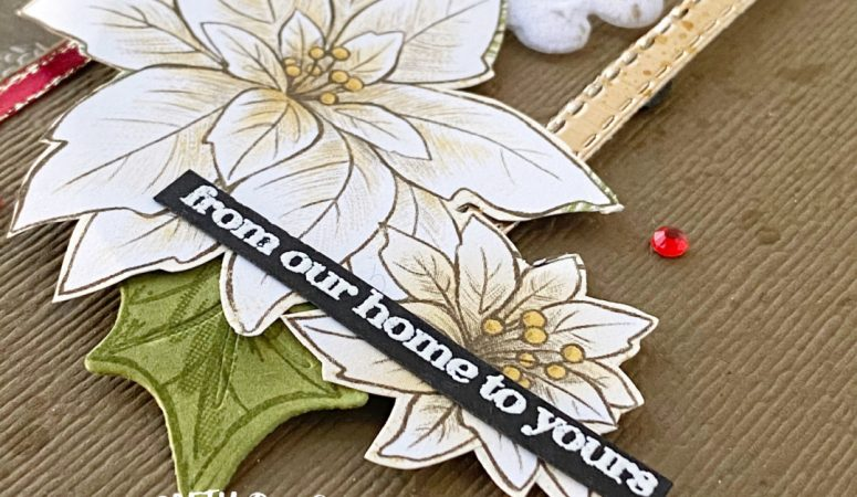 You Can Create it with Poinsettia Place
