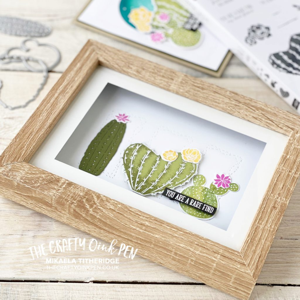 Handmade Gift Frame using Flowering Cactus for Outwest Outback themed hop