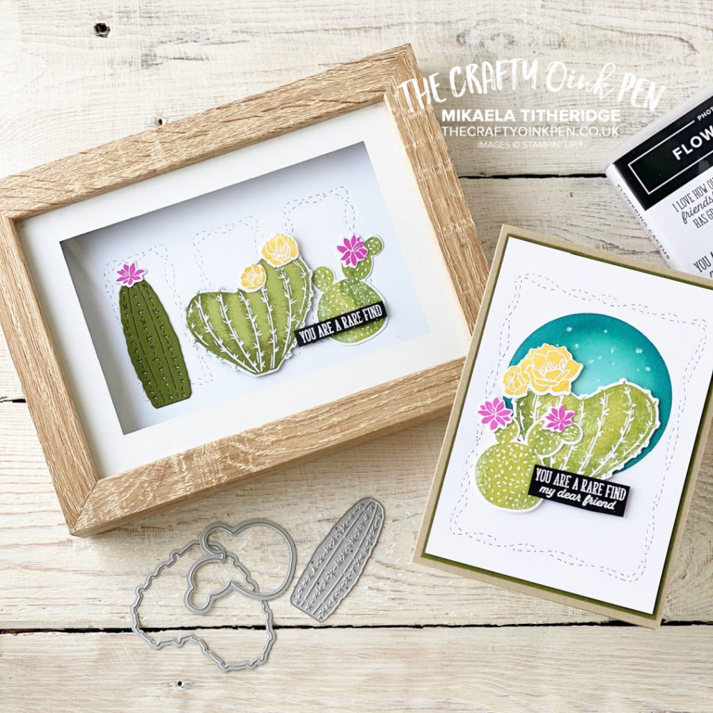 Handmade card and gift frame for outback outwest flowering cactus themed hop